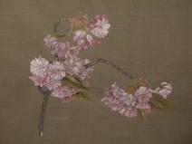 Japanische Kirschblüten 1983